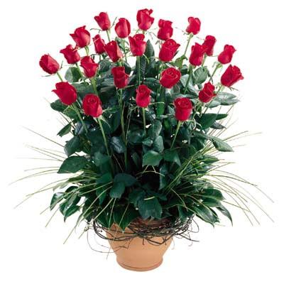 Ağrı uluslararası çiçek gönderme  10 adet kirmizi gül cam yada mika vazo