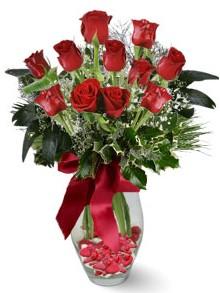 9 adet gül  Ağrı internetten çiçek satışı  kirmizi gül