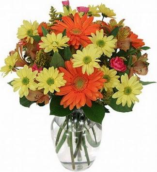 Ağrı hediye sevgilime hediye çiçek  vazo içerisinde karışık mevsim çiçekleri