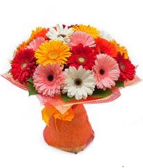 Renkli gerbera buketi  Ağrı anneler günü çiçek yolla
