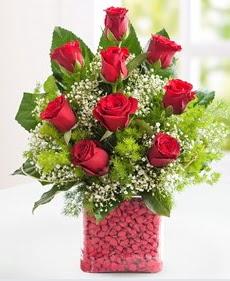 Cam içerisinde 9 adet kırmızı gül  Ağrı internetten çiçek satışı