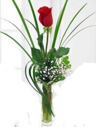 Cam içerisinde 1 kırmızı gül  Ağrı çiçek gönderme sitemiz güvenlidir