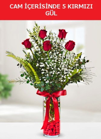 Cam içerisinde 5 adet kırmızı gül  Ağrı çiçek siparişi sitesi