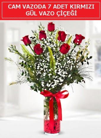 Cam vazoda 7 adet kırmızı gül çiçeği  Ağrı çiçek gönderme sitemiz güvenlidir