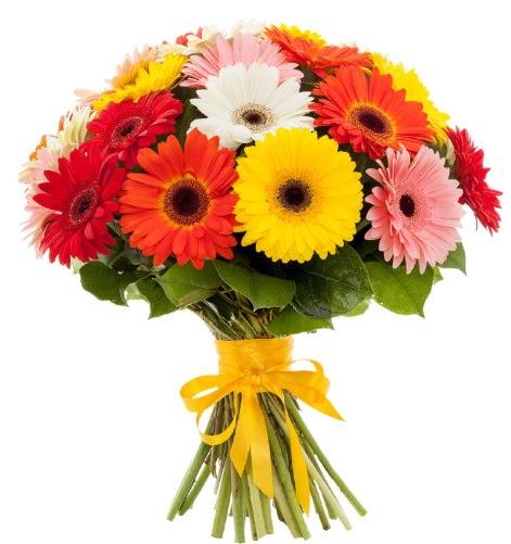 Gerbera demeti buketi  Ağrı çiçek satışı