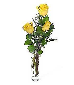 Ağrı internetten çiçek siparişi  3 adet kalite cam yada mika vazo gül