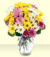 Ağrı internetten çiçek siparişi  mevsim çiçekleri mika yada cam vazo