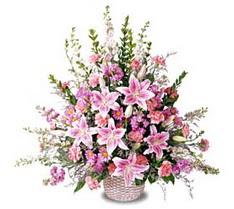 Ağrı çiçek siparişi sitesi  Tanzim mevsim çiçeklerinden çiçek modeli