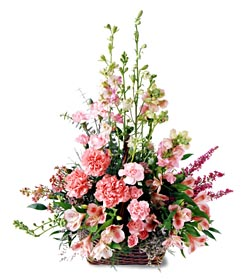 Ağrı ucuz çiçek gönder  mevsim çiçeklerinden özel