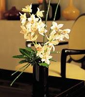 Ağrı çiçekçiler  cam yada mika vazo içerisinde dal orkide