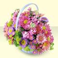 Ağrı yurtiçi ve yurtdışı çiçek siparişi  bir sepet dolusu kir çiçegi  Ağrı çiçek gönderme sitemiz güvenlidir