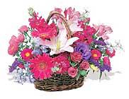 küçük karisik özel sepet   Ağrı çiçek online çiçek siparişi