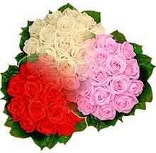 3 renkte gül seven sever   Ağrı çiçek , çiçekçi , çiçekçilik