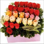 15 adet renkli gül ve cam   Ağrı çiçekçi mağazası