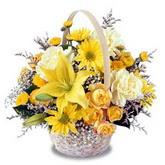 sadece sari çiçek sepeti   Ağrı çiçek gönderme sitemiz güvenlidir