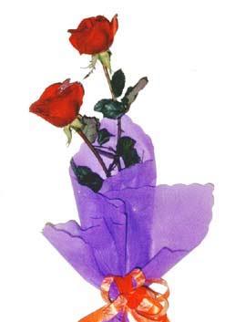 2  adet kirmizi gül buketi   Ağrı çiçek , çiçekçi , çiçekçilik