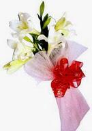 Ağrı çiçek , çiçekçi , çiçekçilik  ince vazoda gerbera ve ayi