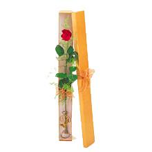 ince  kutuda  1  gül   Ağrı çiçek yolla