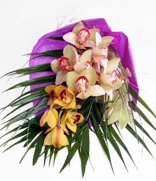 Ağrı cicekciler , cicek siparisi  1 adet dal orkide buket halinde sunulmakta
