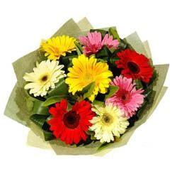 9 adet karisik gerbera demeti  Ağrı çiçek mağazası , çiçekçi adresleri