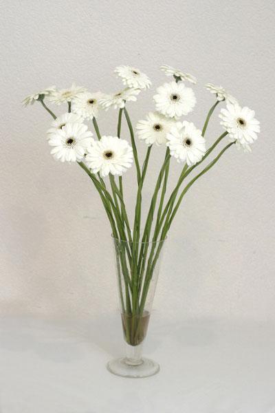 Ağrı çiçek mağazası , çiçekçi adresleri  cam vazo içerisinde 17 adet sade gerbera