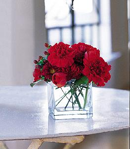 Ağrı ucuz çiçek gönder  kirmizinin sihri cam içinde görsel sade çiçekler