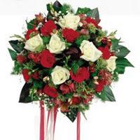 Ağrı ucuz çiçek gönder  6 adet kirmizi 6 adet beyaz ve kir çiçekleri buket
