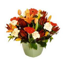 mevsim çiçeklerinden karma aranjman  Ağrı çiçek yolla , çiçek gönder , çiçekçi