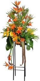Ağrı çiçek siparişi sitesi  perförje tanzimi dügün nikah ve açilislara