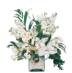 Ağrı internetten çiçek siparişi  sadece beyazlardan olusmus mevsim cam yada mika tanzim