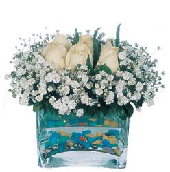 Ağrı çiçekçi mağazası  mika yada cam içerisinde 7 adet beyaz gül