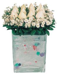 Ağrı çiçekçi mağazası  7 adet beyaz gül cam yada mika vazo tanzim