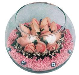 Ağrı internetten çiçek satışı  cam fanus içerisinde 10 adet gül