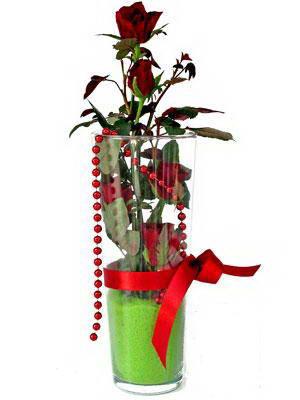Ağrı online çiçek gönderme sipariş  Cam yada mika içerisinde 9 adet kirmizi gül - sevdiklerinize özel