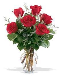 Ağrı çiçek gönderme sitemiz güvenlidir  7 adet kirmizi gül cam yada mika vazoda sevenlere