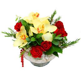 Ağrı çiçek gönderme  1 adet orkide 5 adet gül cam yada mikada