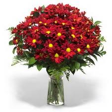 Ağrı çiçek yolla  Kir çiçekleri cam yada mika vazo içinde