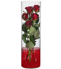 cam içerisinde 7 adet kirmizi gül  Ağrı çiçekçiler