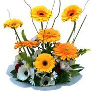 camda gerbera ve mis kokulu kir çiçekleri  Ağrı çiçekçi telefonları