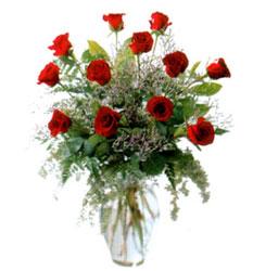 Vazo içerisinde 11 kirmizi gül  Ağrı çiçek siparişi vermek