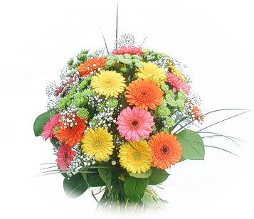13 adet gerbera çiçegi buketi  Ağrı online çiçek gönderme sipariş