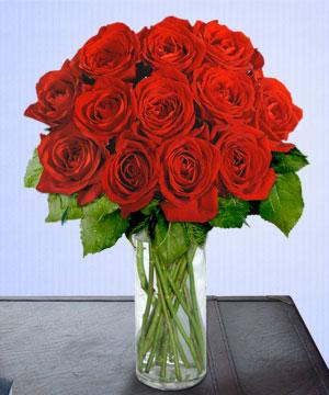 Anneme 12 adet cam içerisinde kirmizi gül  Ağrı çiçek siparişi sitesi