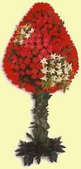 Ağrı çiçek gönderme  dügün açilis çiçekleri  Ağrı çiçek online çiçek siparişi