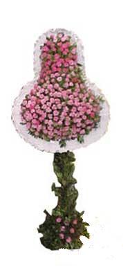 Ağrı ucuz çiçek gönder  dügün açilis çiçekleri  Ağrı internetten çiçek siparişi