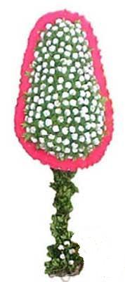 Ağrı çiçekçi telefonları  dügün açilis çiçekleri  Ağrı cicek , cicekci
