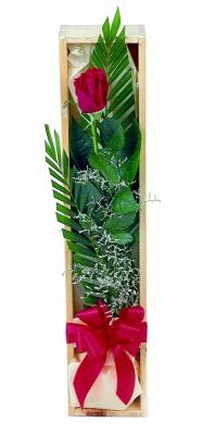 1 adet kutuda kirmizi gül  Ağrı çiçek gönderme sitemiz güvenlidir