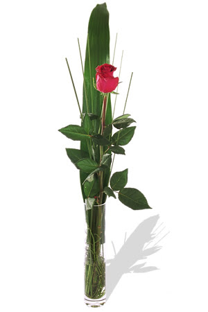 1 adet cam vazo içerisinde kirmizi gül  Ağrı çiçek , çiçekçi , çiçekçilik