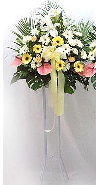 Ağrı online çiçek gönderme sipariş   perförje çiçegi dügün çiçekleri