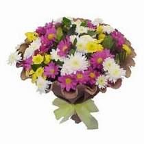 Ağrı çiçekçi telefonları  Mevsim kir çiçegi demeti