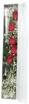 Ağrı çiçek siparişi sitesi   5 adet gülden kutu güller